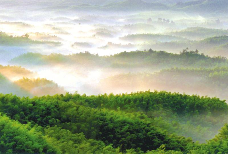 蜀南竹海+圣灵山大溶洞纯玩二日游